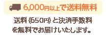 6,000円以上で送料無料